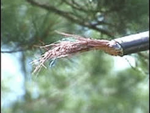 Copper theft knocks out AT&T service forArkansascustomers