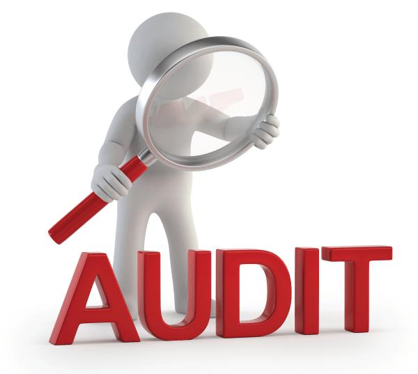 DPS Audit Update